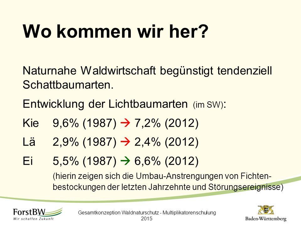 Wo kommen wir her? Naturnahe Waldwirtschaft begünstigt tendenziell Schattbaumarten. Entwicklung der Lichtbaumarten (im SW) : Kie9,6% (1987)  7,2% (20