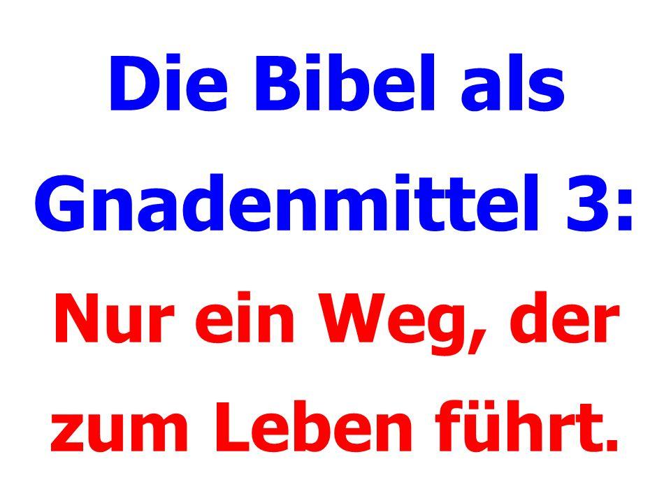 Die Bibel als Gnadenmittel 3: Nur ein Weg, der zum Leben führt.