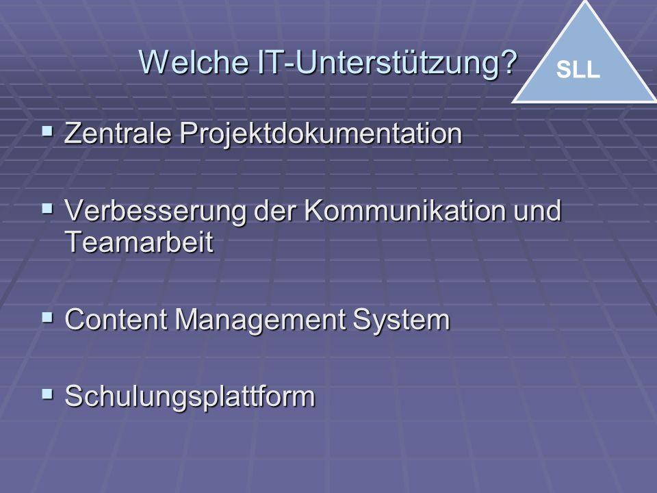 Welche IT-Unterstützung?  Zentrale Projektdokumentation  Verbesserung der Kommunikation und Teamarbeit  Content Management System  Schulungsplattf