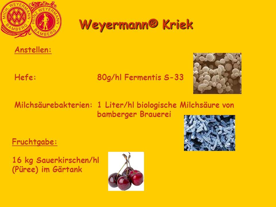 Weyermann® Kriek Anstellen: Hefe:80g/hl Fermentis S-33 Milchsäurebakterien:1 Liter/hl biologische Milchsäure von bamberger Brauerei Fruchtgabe: 16 kg
