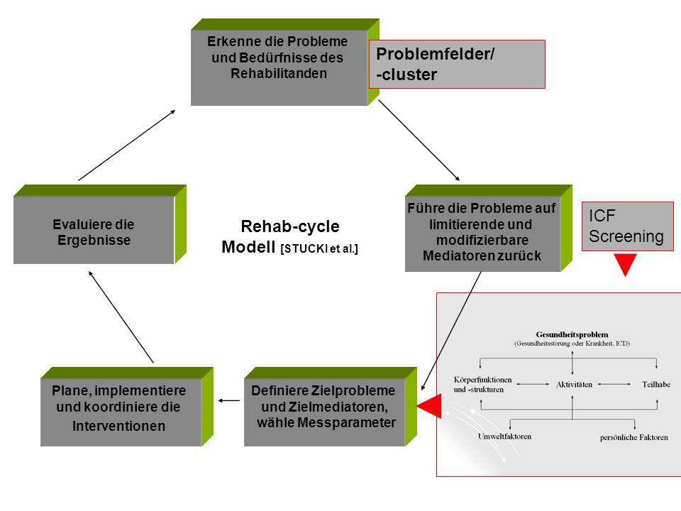 Erkenne die Probleme und Bedürfnisse des Rehabilitanden Führe die Probleme auf limitierende und modifizierbare Mediatoren zurück Definiere Zielproblem