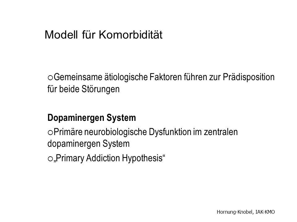 Modell für Komorbidität  Gemeinsame ätiologische Faktoren führen zur Prädisposition für beide Störungen Dopaminergen System  Primäre neurobiologisch
