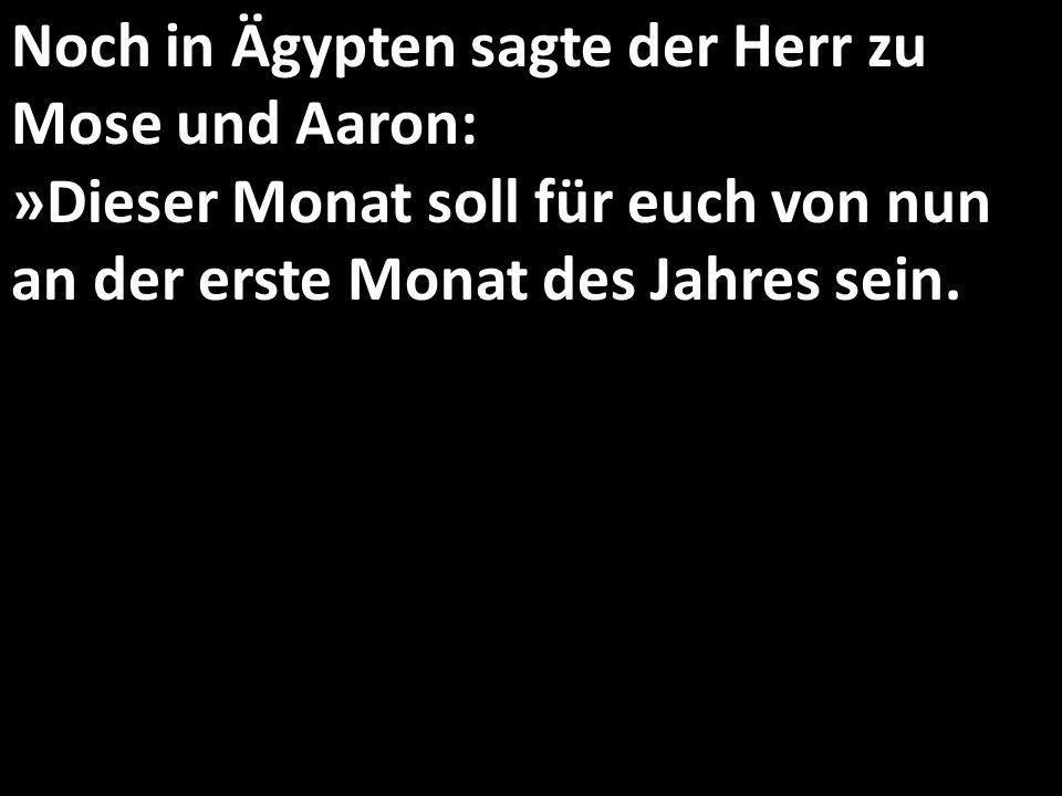 Noch in Ägypten sagte der Herr zu Mose und Aaron: »Dieser Monat soll für euch von nun an der erste Monat des Jahres sein.
