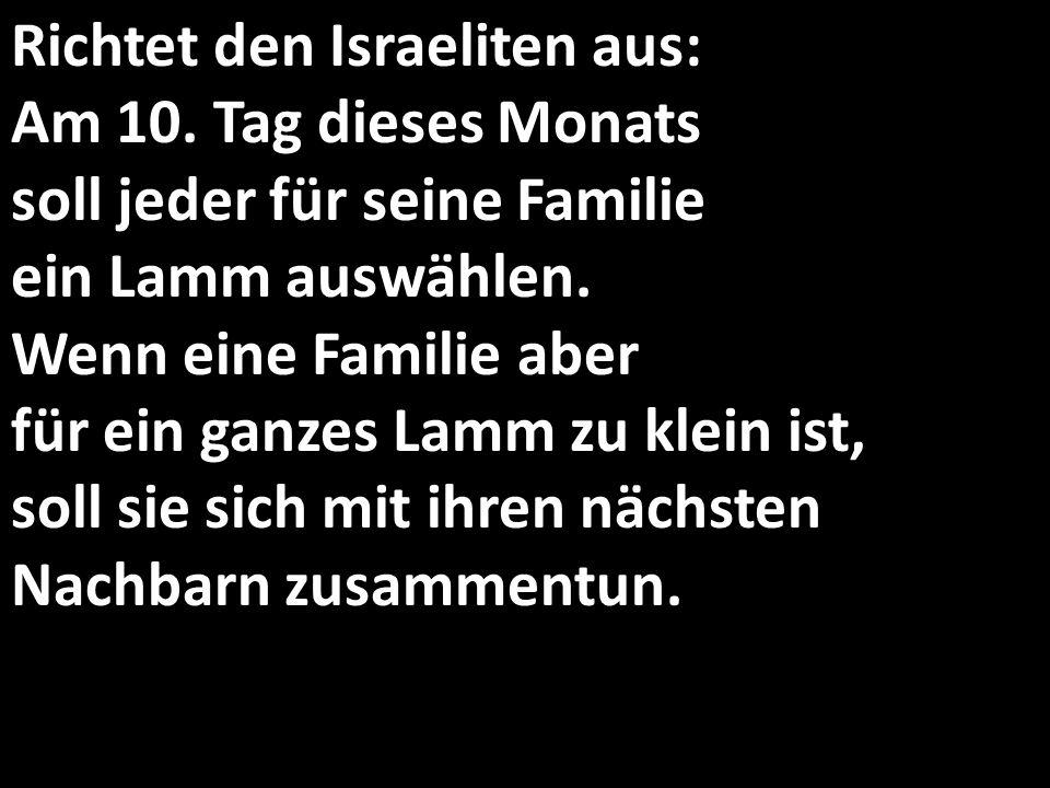 Richtet den Israeliten aus: Am 10. Tag dieses Monats soll jeder für seine Familie ein Lamm auswählen. Wenn eine Familie aber für ein ganzes Lamm zu kl