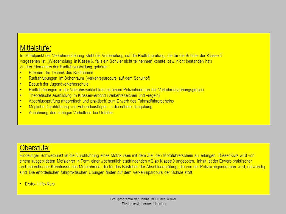 Schulprogramm der Schule Im Grünen Winkel - Förderschule Lernen- Lippstadt Mittelstufe: Im Mittelpunkt der Verkehrserziehung steht die Vorbereitung au