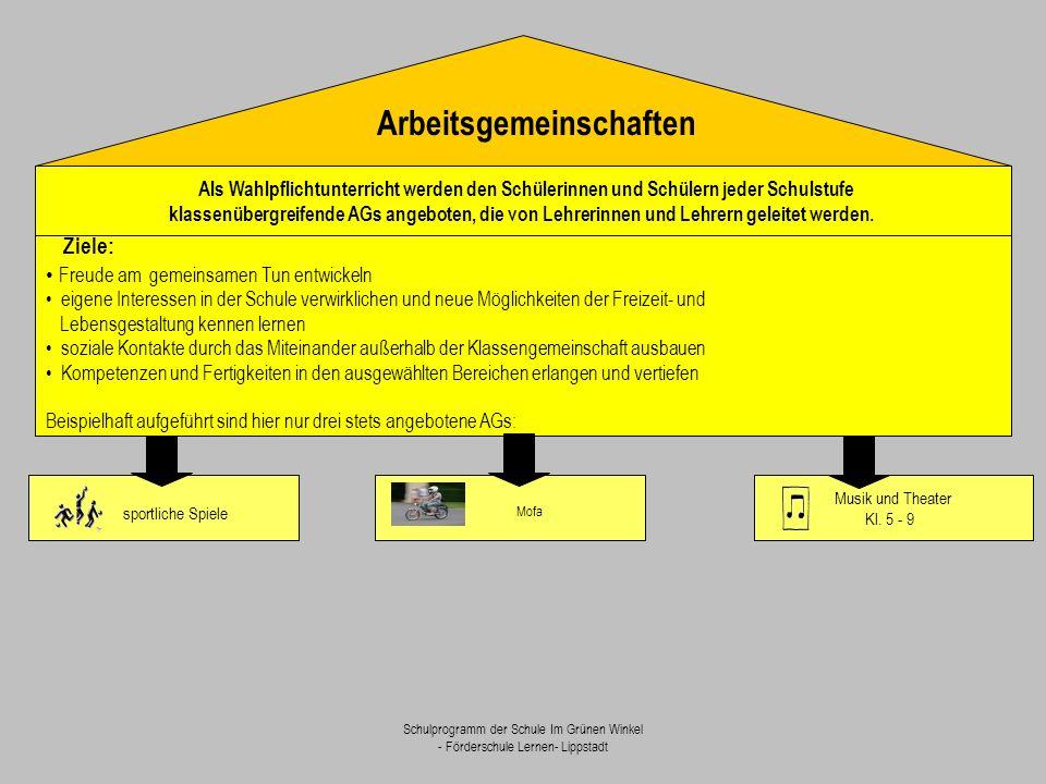 Schulprogramm der Schule Im Grünen Winkel - Förderschule Lernen- Lippstadt Als Wahlpflichtunterricht werden den Schülerinnen und Schülern jeder Schuls