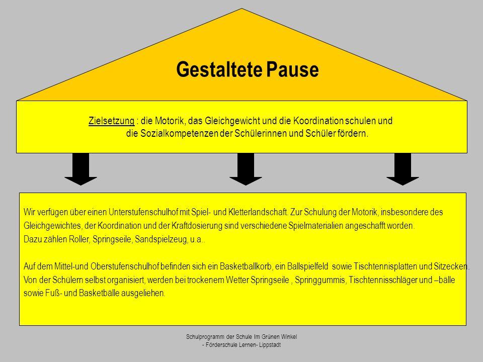 Schulprogramm der Schule Im Grünen Winkel - Förderschule Lernen- Lippstadt Gestaltete Pause Zielsetzung : die Motorik, das Gleichgewicht und die Koord
