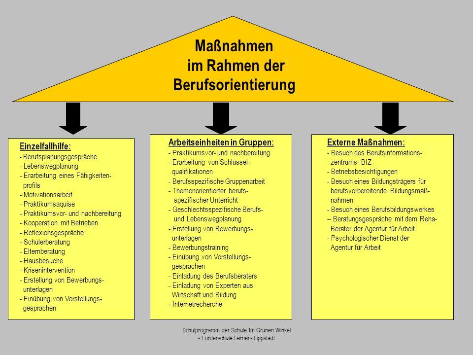 Schulprogramm der Schule Im Grünen Winkel - Förderschule Lernen- Lippstadt Einzelfallhilfe: - Berufsplanungsgespräche - Lebenswegplanung - Erarbeitung