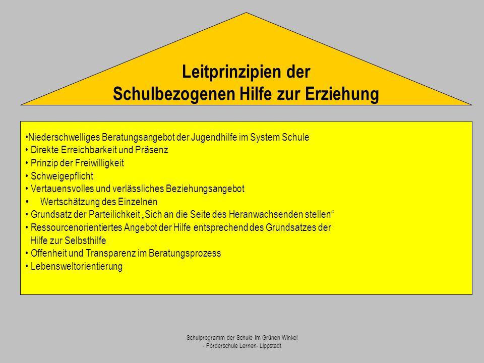 Schulprogramm der Schule Im Grünen Winkel - Förderschule Lernen- Lippstadt Niederschwelliges Beratungsangebot der Jugendhilfe im System Schule Direkte