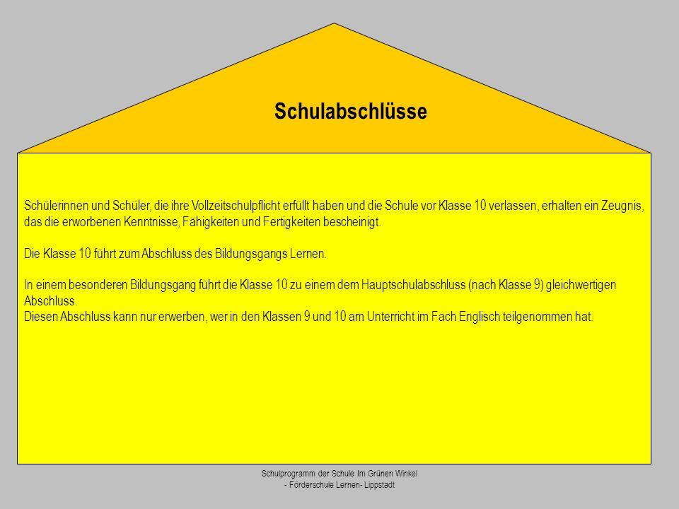 Schulprogramm der Schule Im Grünen Winkel - Förderschule Lernen- Lippstadt Schülerinnen und Schüler, die ihre Vollzeitschulpflicht erfüllt haben und d