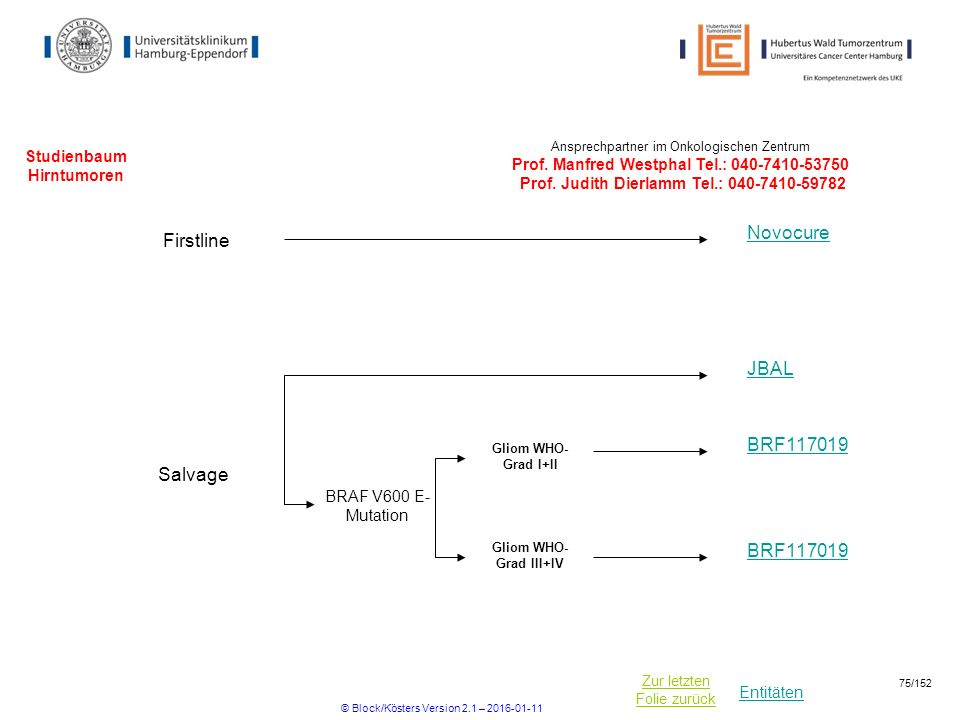 Entitäten Zur letzten Folie zurück Studienbaum Hirntumoren Firstline Novocure BRAF V600 E- Mutation JBAL Ansprechpartner im Onkologischen Zentrum Prof.