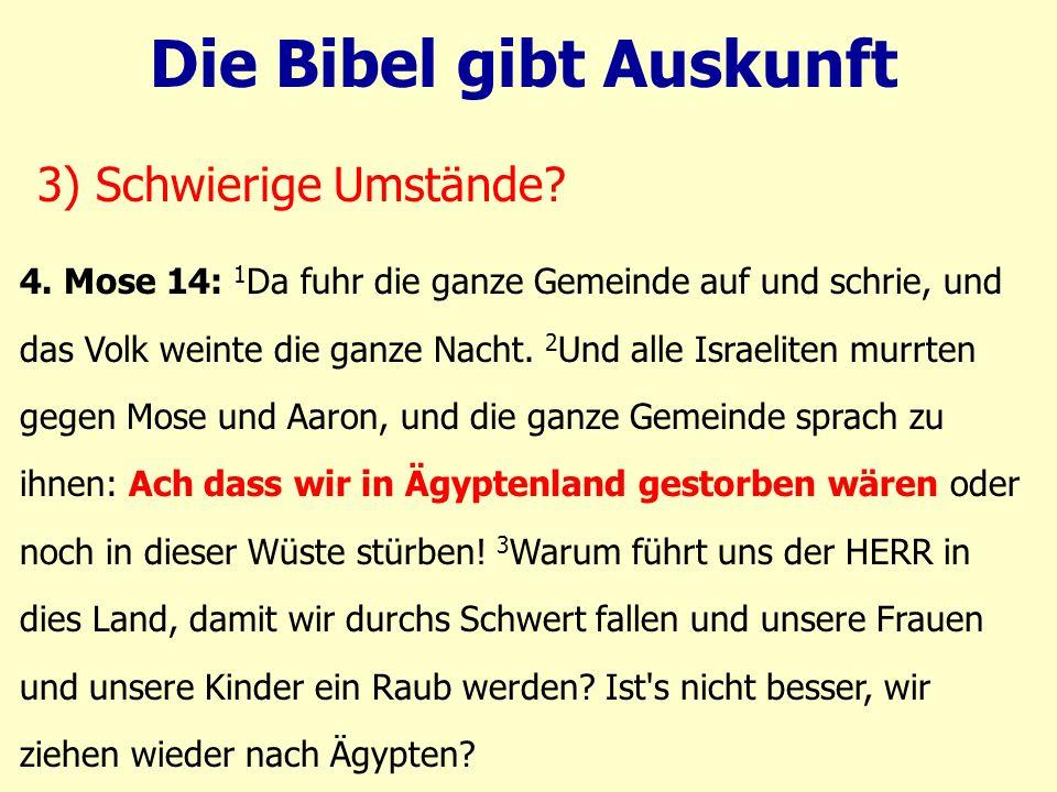 4. Mose 14: 1 Da fuhr die ganze Gemeinde auf und schrie, und das Volk weinte die ganze Nacht. 2 Und alle Israeliten murrten gegen Mose und Aaron, und