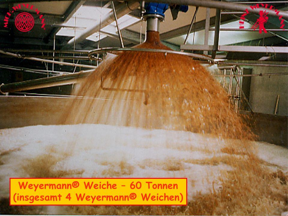 Weiche1 Weyermann® Weiche – 60 Tonnen (insgesamt 4 Weyermann® Weichen)