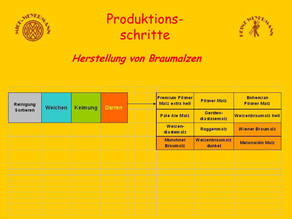 Produktions- schritte Herstellung von Braumalzen