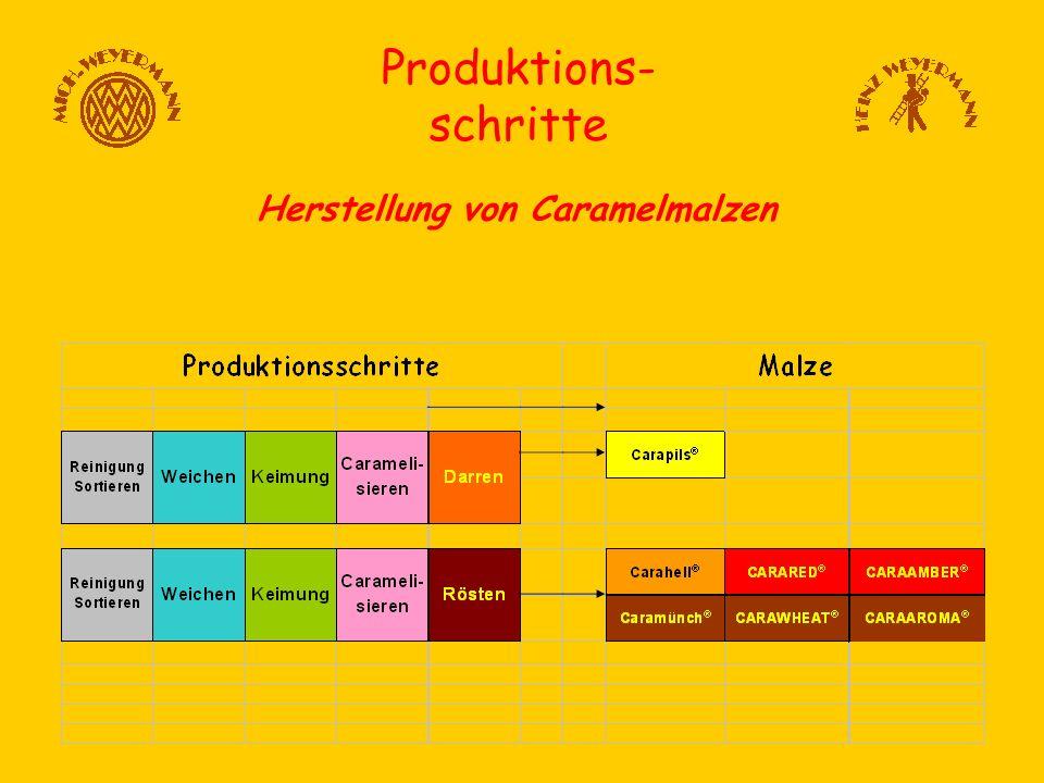 Produktions- schritte Herstellung von Caramelmalzen