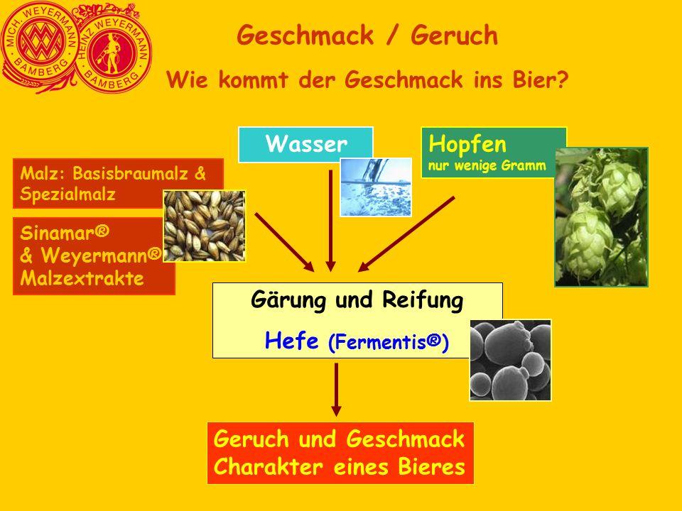 Sinamar® & Weyermann® Malzextrakte Geschmack / Geruch Wie kommt der Geschmack ins Bier? Malz: Basisbraumalz & Spezialmalz Hopfen nur wenige Gramm Gäru