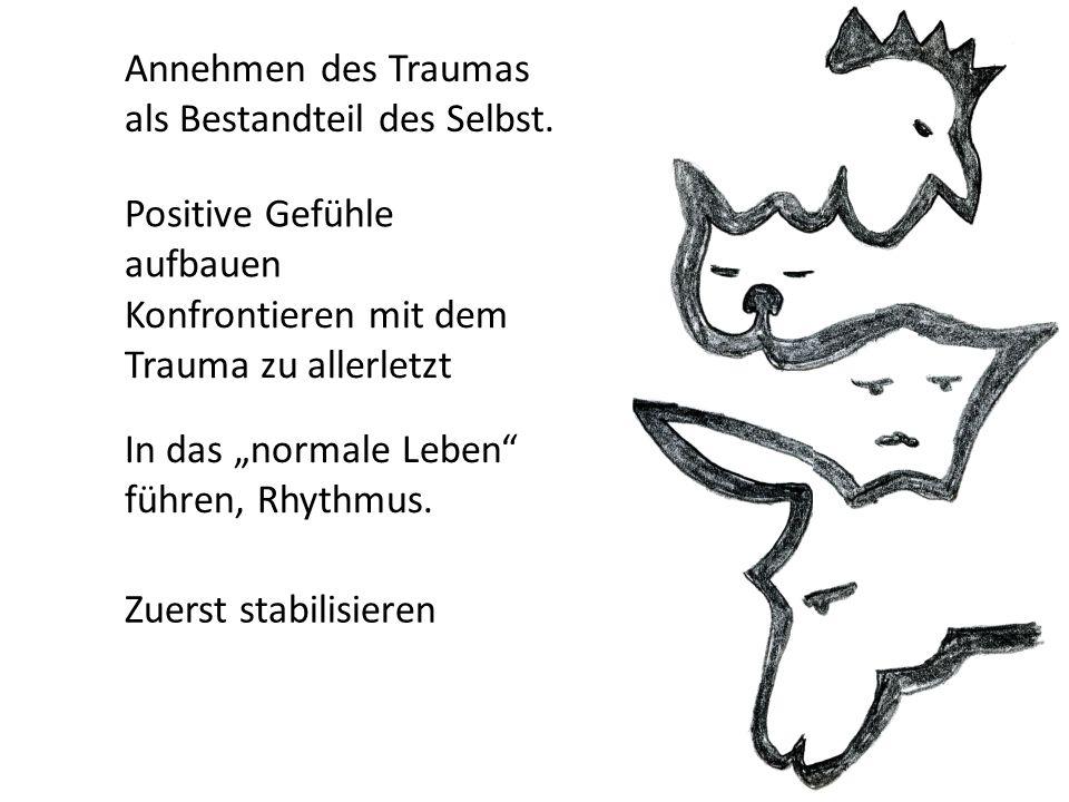 """Annehmen des Traumas als Bestandteil des Selbst. Positive Gefühle aufbauen In das """"normale Leben"""" führen, Rhythmus. Zuerst stabilisieren Konfrontieren"""