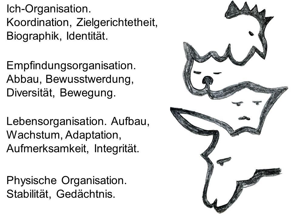 Physische Organisation. Stabilität, Gedächtnis. Lebensorganisation. Aufbau, Wachstum, Adaptation, Aufmerksamkeit, Integrität. Empfindungsorganisation.