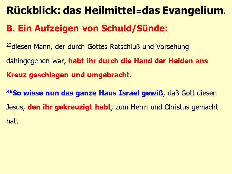 B. Ein Aufzeigen von Schuld/Sünde: 23 diesen Mann, der durch Gottes Ratschluß und Vorsehung dahingegeben war, habt ihr durch die Hand der Heiden ans K
