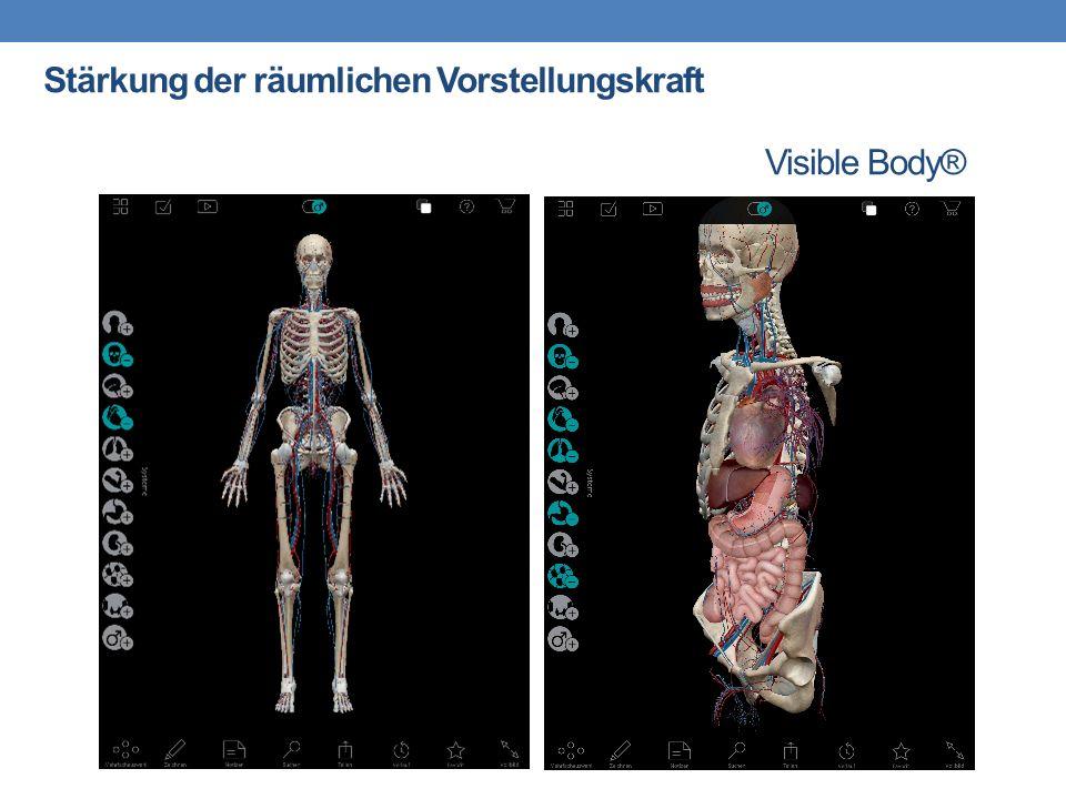 Visible Body® Stärkung der räumlichen Vorstellungskraft