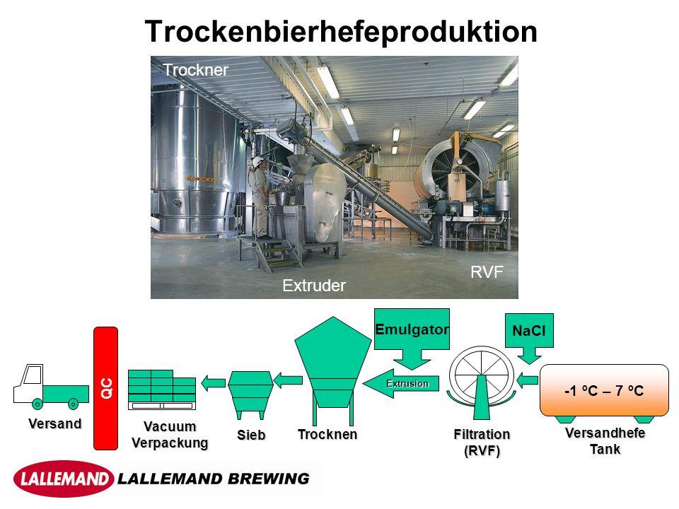 Trockenbierhefeproduktion -1 ºC – 7 ºC VersandhefeTank Filtration(RVF) Extrusion Trocknen Sieb Vacuum Verpackung Versand Emulgator QC NaCl Trockner Extruder RVF