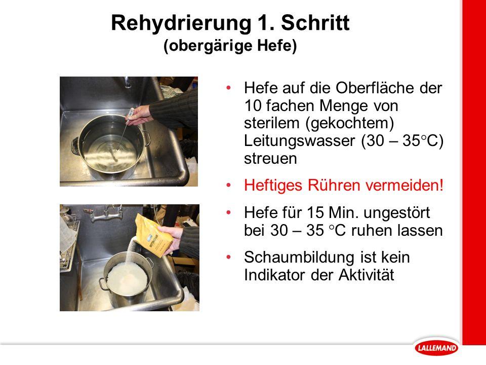 Rehydrierung 1.