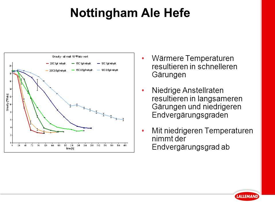 Nottingham Ale Hefe Wärmere Temperaturen resultieren in schnelleren Gärungen Niedrige Anstellraten resultieren in langsameren Gärungen und niedrigeren Endvergärungsgraden Mit niedrigeren Temperaturen nimmt der Endvergärungsgrad ab