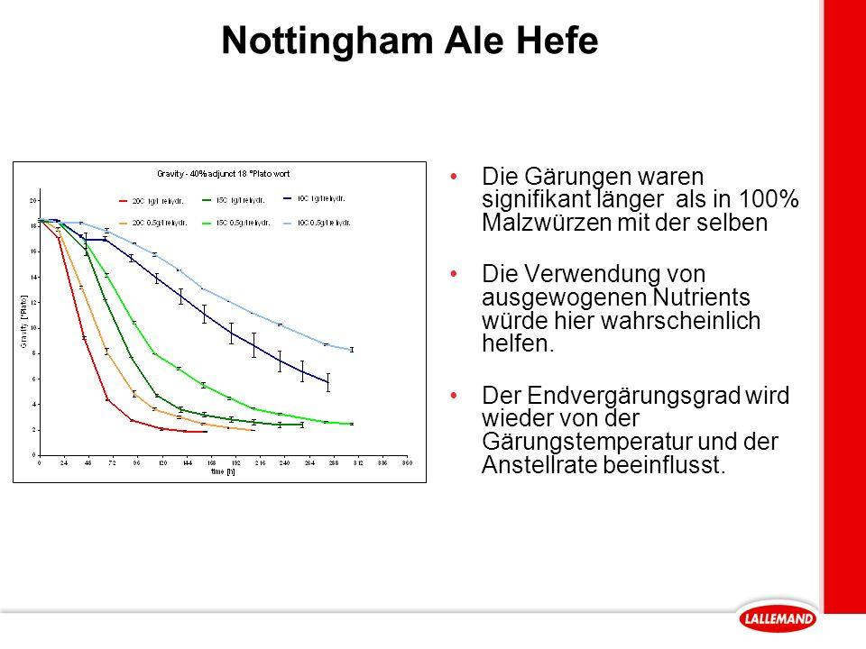 Nottingham Ale Hefe Die Gärungen waren signifikant länger als in 100% Malzwürzen mit der selben Die Verwendung von ausgewogenen Nutrients würde hier wahrscheinlich helfen.