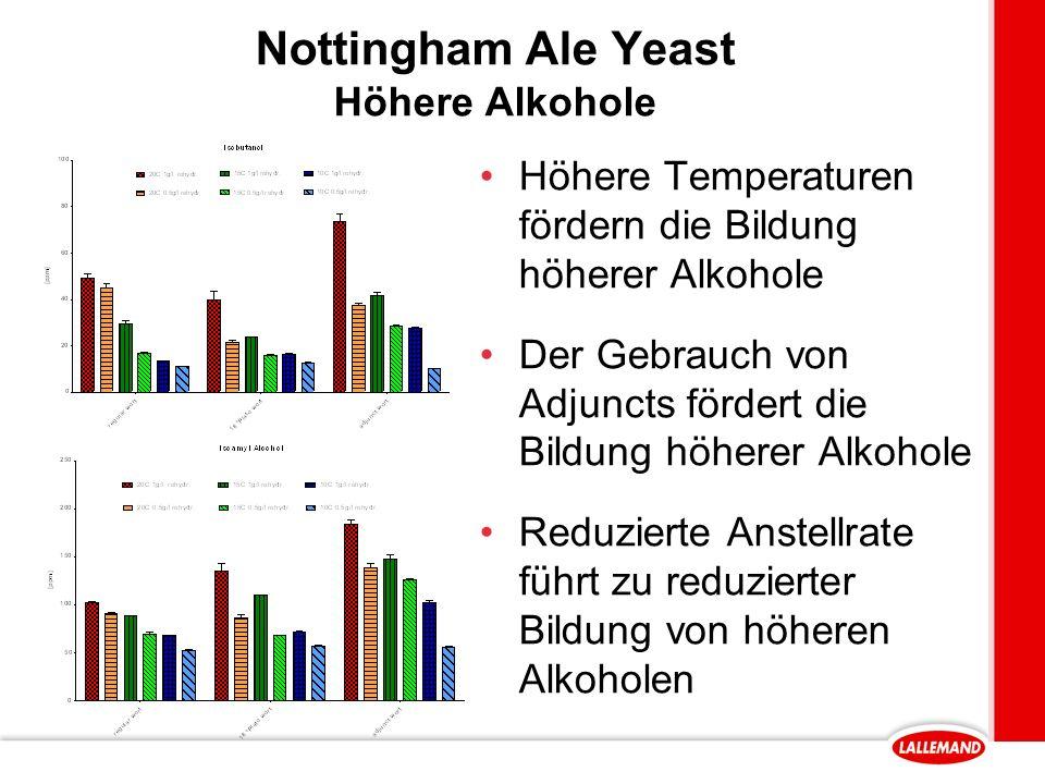 Nottingham Ale Yeast Höhere Alkohole Höhere Temperaturen fördern die Bildung höherer Alkohole Der Gebrauch von Adjuncts fördert die Bildung höherer Alkohole Reduzierte Anstellrate führt zu reduzierter Bildung von höheren Alkoholen