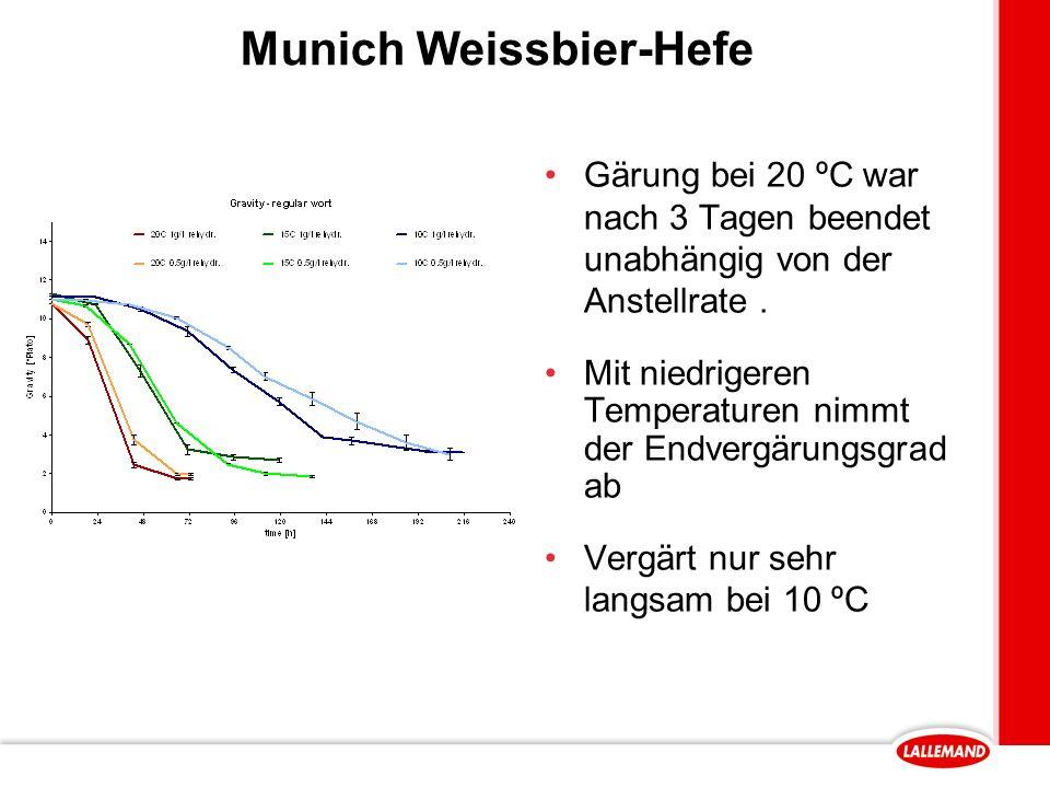 Munich Weissbier-Hefe Gärung bei 20 ºC war nach 3 Tagen beendet unabhängig von der Anstellrate.