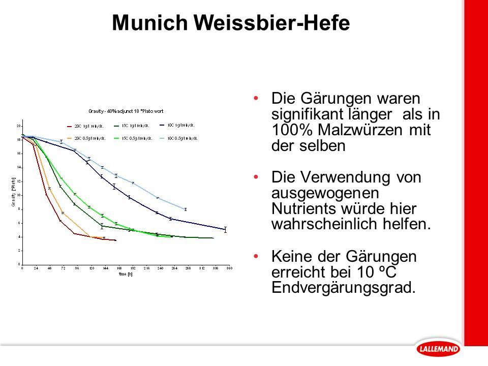 Munich Weissbier-Hefe Die Gärungen waren signifikant länger als in 100% Malzwürzen mit der selben Die Verwendung von ausgewogenen Nutrients würde hier wahrscheinlich helfen.