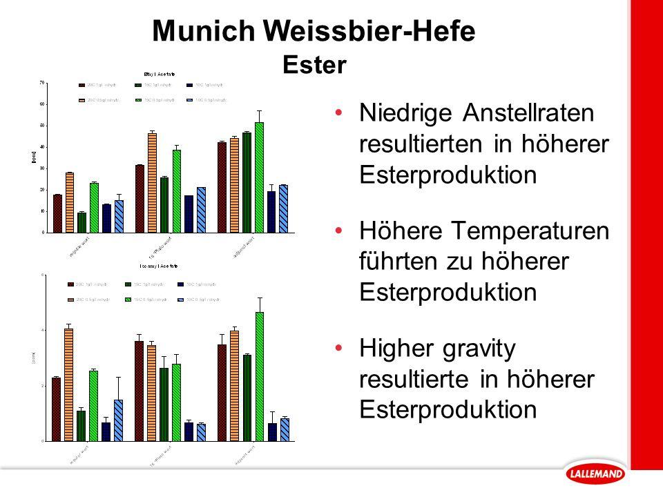 Munich Weissbier-Hefe Ester Niedrige Anstellraten resultierten in höherer Esterproduktion Höhere Temperaturen führten zu höherer Esterproduktion Higher gravity resultierte in höherer Esterproduktion