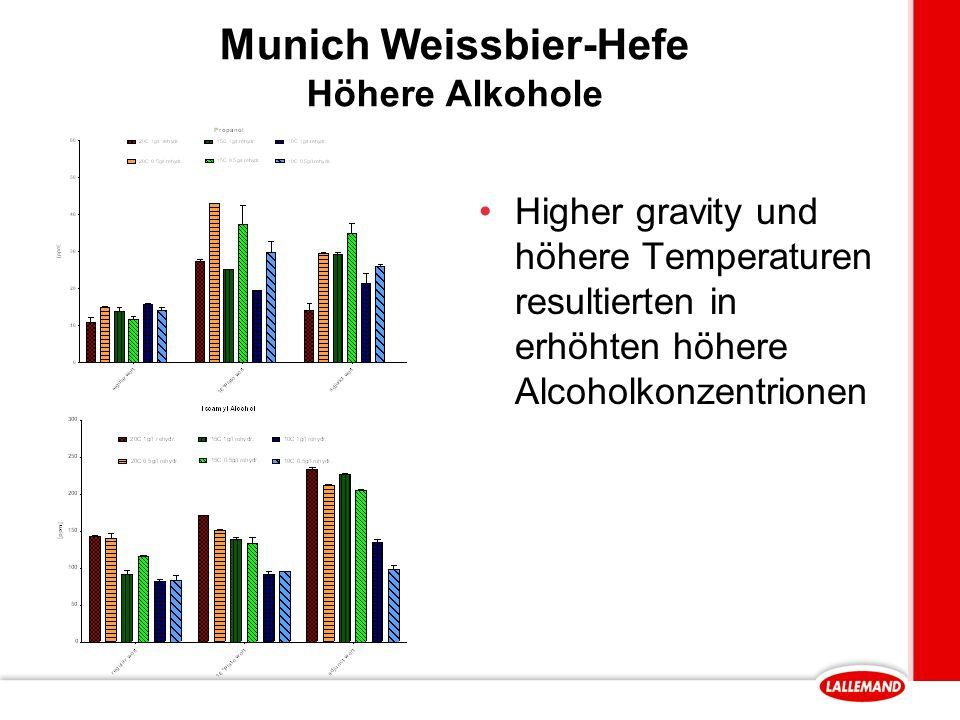 Munich Weissbier-Hefe Höhere Alkohole Higher gravity und höhere Temperaturen resultierten in erhöhten höhere Alcoholkonzentrionen