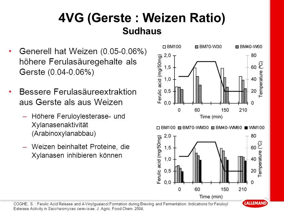 4VG (Gerste : Weizen Ratio) Sudhaus Generell hat Weizen (0.05-0.06%) höhere Ferulasäuregehalte als Gerste (0.04-0.06%) Bessere Ferulasäureextraktion aus Gerste als aus Weizen –Höhere Feruloylesterase- und Xylanasenaktivität (Arabinoxylanabbau) –Weizen beinhaltet Proteine, die Xylanasen inhibieren können COGHE, S.