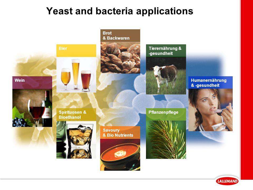 Yeast and bacteria applications Spirituosen & Bioethanol Brot & Backwaren Wein Tierernährung & -gesundheit Savoury & Bio Nutrients Bier Humanernährung & -gesundheit Pflanzenpflege