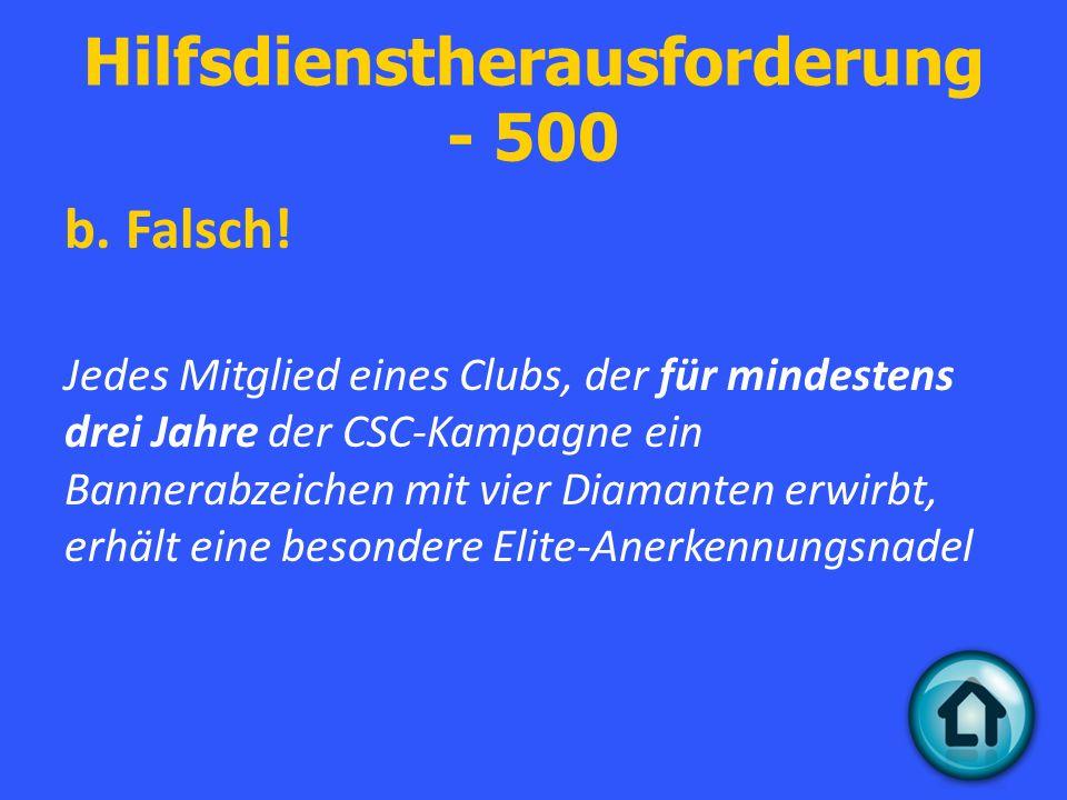 Hilfsdienstherausforderung - 500 b. Falsch.