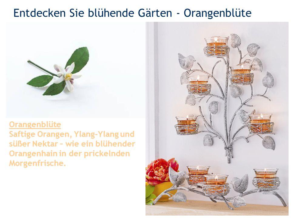 Entdecken Sie blühende Gärten - Orangenblüte 2 Orangenblüte Saftige Orangen, Ylang-Ylang und süßer Nektar – wie ein blühender Orangenhain in der prickelnden Morgenfrische.