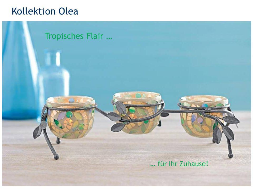 Kollektion Olea 32 Tropisches Flair … … für Ihr Zuhause!