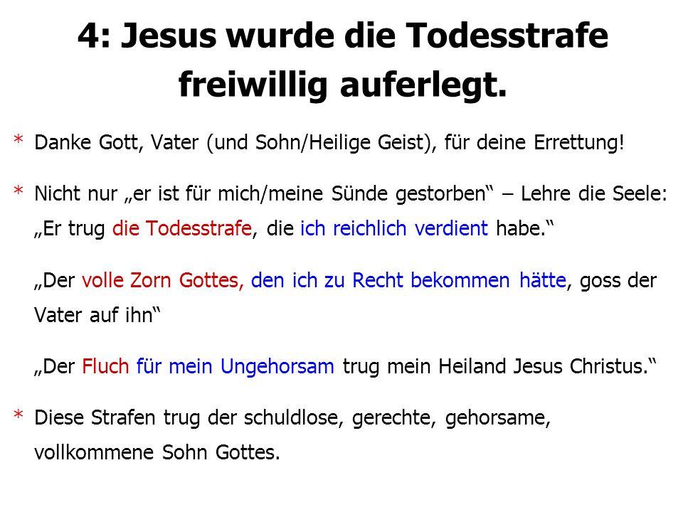 """4: Jesus wurde die Todesstrafe freiwillig auferlegt. *Danke Gott, Vater (und Sohn/Heilige Geist), für deine Errettung! *Nicht nur """"er ist für mich/mei"""