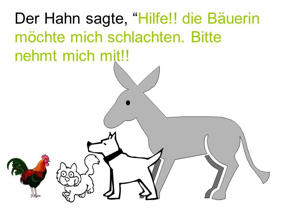 """Der Hahn sagte, """"Hilfe!! die Bäuerin möchte mich schlachten. Bitte nehmt mich mit!!"""