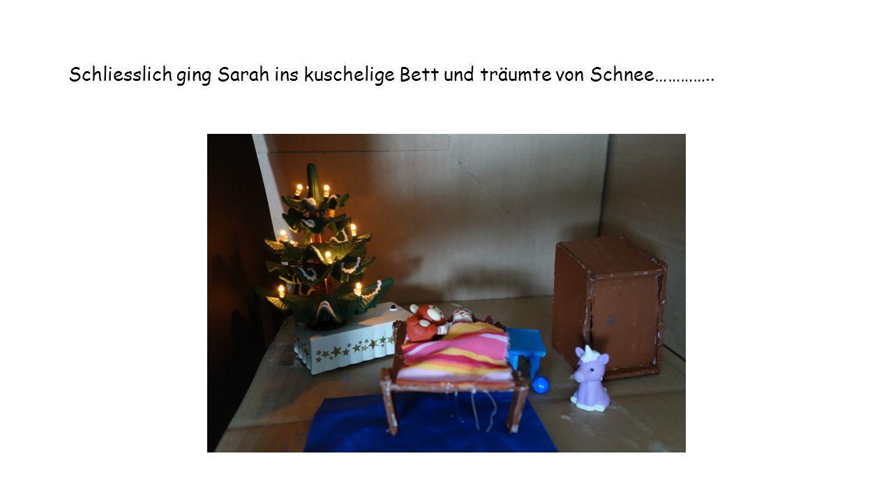 Schliesslich ging Sarah ins kuschelige Bett und träumte von Schnee…………..
