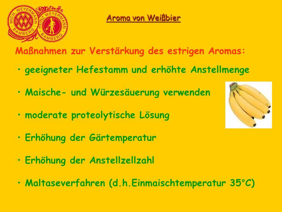 Aroma von Weißbier Maßnahmen zur Verstärkung des estrigen Aromas: geeigneter Hefestamm und erhöhte Anstellmenge Maische- und Würzesäuerung verwenden m