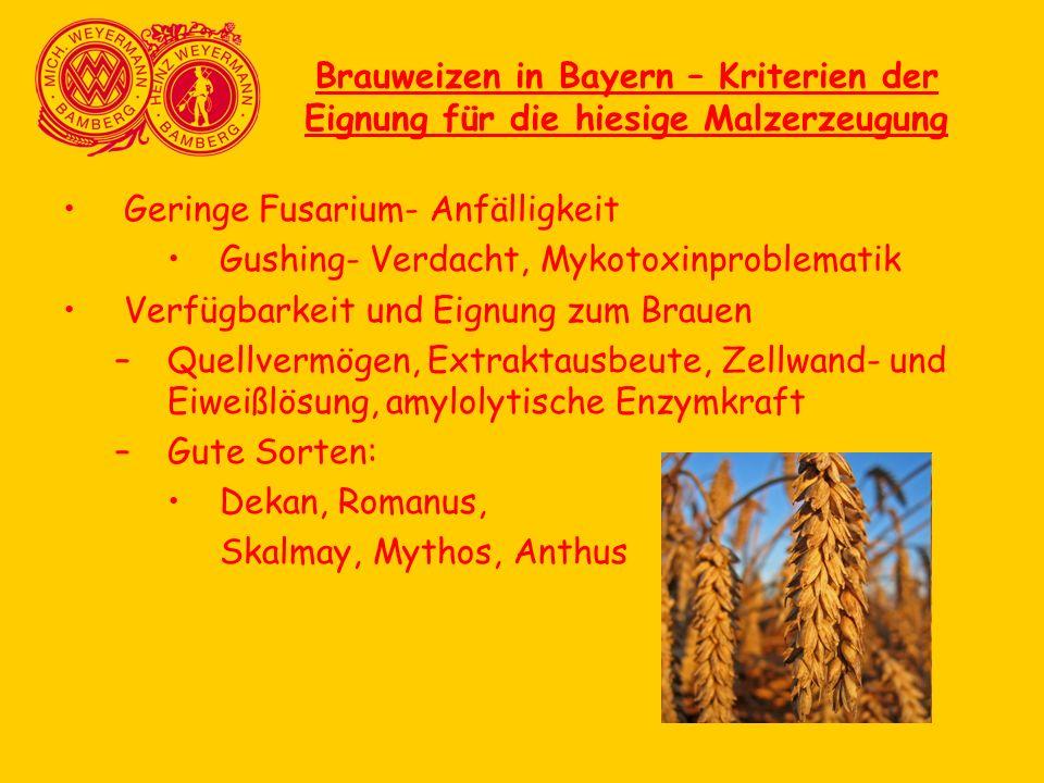Brauweizen in Bayern – Kriterien der Eignung für die hiesige Malzerzeugung Geringe Fusarium- Anfälligkeit Gushing- Verdacht, Mykotoxinproblematik Verf