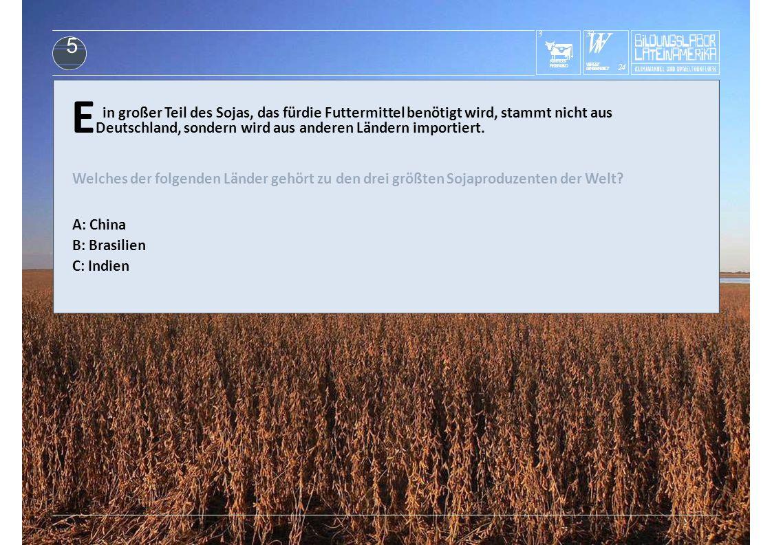 KUHFRISST REGENWALD 3 E Deutschland, sondern wird aus anderen Ländern importiert. in großer Teil des Sojas, das fürdie Futtermittel benötigt wird, sta