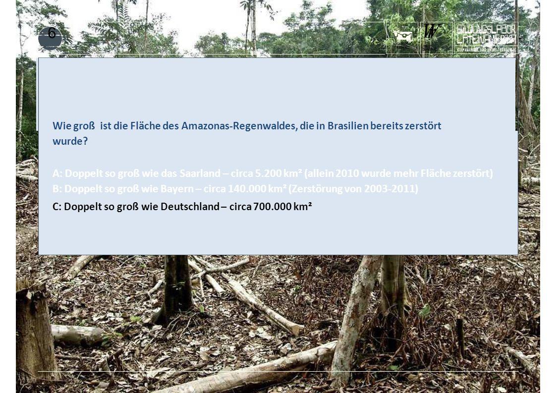 KUHFRISST REGENWALD 3 WrWr DENREGENWALD? 24 WERISST 3232 6 Wie groß ist die Fläche des Amazonas-Regenwaldes, die in Brasilien bereits zerstört wurde?