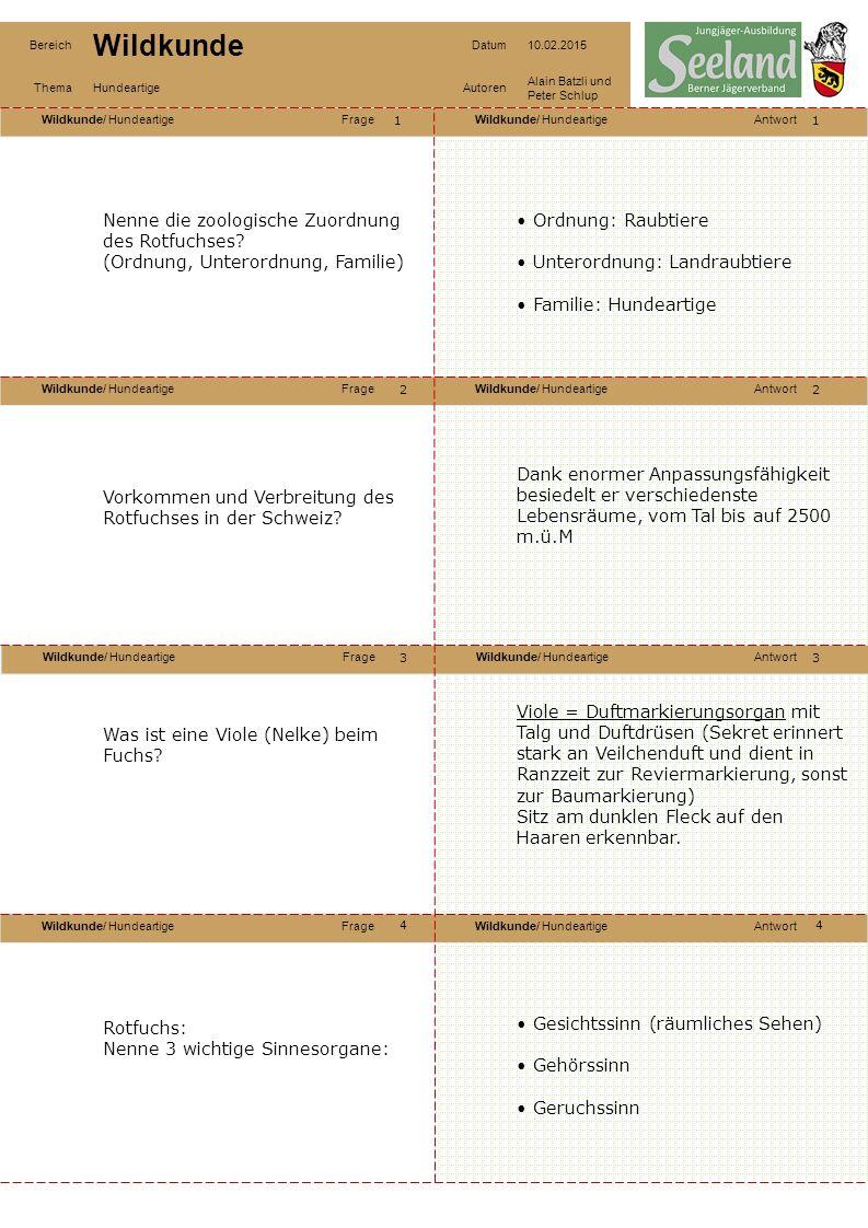 Wildkunde/ HundeartigeFrageWildkunde/ HundeartigeAntwort Wildkunde/ HundeartigeFrageWildkunde/ HundeartigeAntwort Wildkunde/ HundeartigeFrageWildkunde/ HundeartigeAntwort Wildkunde/ HundeartigeFrageWildkunde/ HundeartigeAntwort Bereich Wildkunde Datum10.02.2015 ThemaHundeartigeAutoren Alain Batzli und Peter Schlup 55 6 8 7 6 7 8 Rotfuchs: Benenne die Spuren: A: Hund.