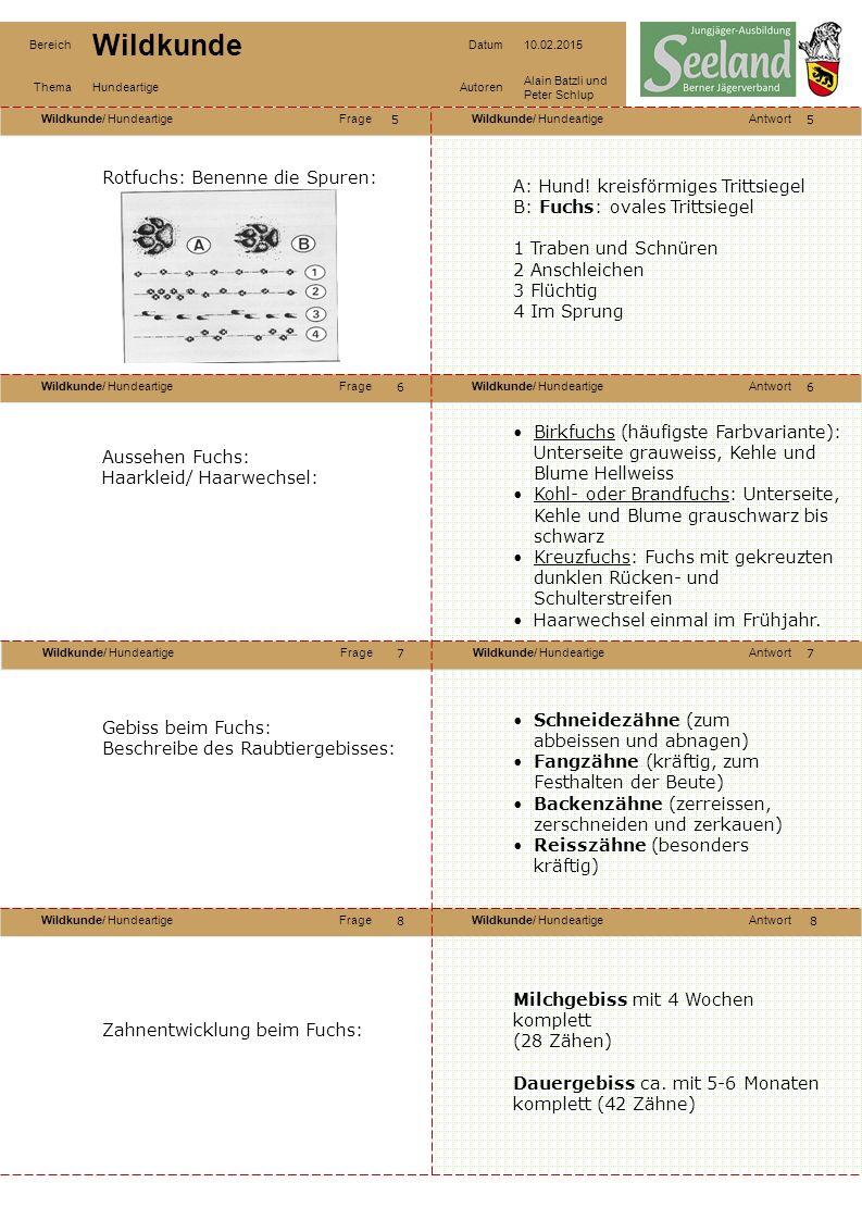 Wildkunde/ HundeartigeFrageWildkunde/ HundeartigeAntwort Wildkunde/ HundeartigeFrageWildkunde/ HundeartigeAntwort Wildkunde/ HundeartigeFrageWildkunde/ HundeartigeAntwort Wildkunde/ HundeartigeFrageWildkunde/ HundeartigeAntwort Bereich Wildkunde Datum10.02.2015 ThemaHundeartigeAutoren Alain Batzli und Peter Schlup 99 10 12 11 10 11 12 Nahrung des Fuchses: Überwiegend Mäuse Säugetiere bis Rehkitzgrösse und im Winter auch schwaches Rehwild Vögel (einschliesslich Gelege) Fallwild, Insekten, Larven, Beeren und Obst Zuerst frisst der Fuchs die Innereien, einschliesslich Magen und Darm, was ihm zur Vitaminaufnahme dient.
