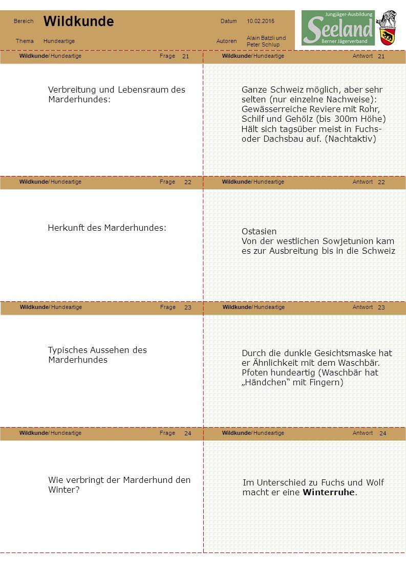 Wildkunde/ HundeartigeFrageWildkunde/ HundeartigeAntwort Wildkunde/ HundeartigeFrageWildkunde/ HundeartigeAntwort Wildkunde/ HundeartigeFrageWildkunde/ HundeartigeAntwort Wildkunde/ HundeartigeFrageWildkunde/ HundeartigeAntwort Bereich Wildkunde Datum10.02.2015 ThemaHundeartigeAutoren Alain Batzli und Peter Schlup 25 26 28 27 26 27 28 Nahrung des Marderhundes: Allesfresser und wie der Fuchs Nahrungsgeneralist Aktuelle Situation zum Wolf in der Schweiz.