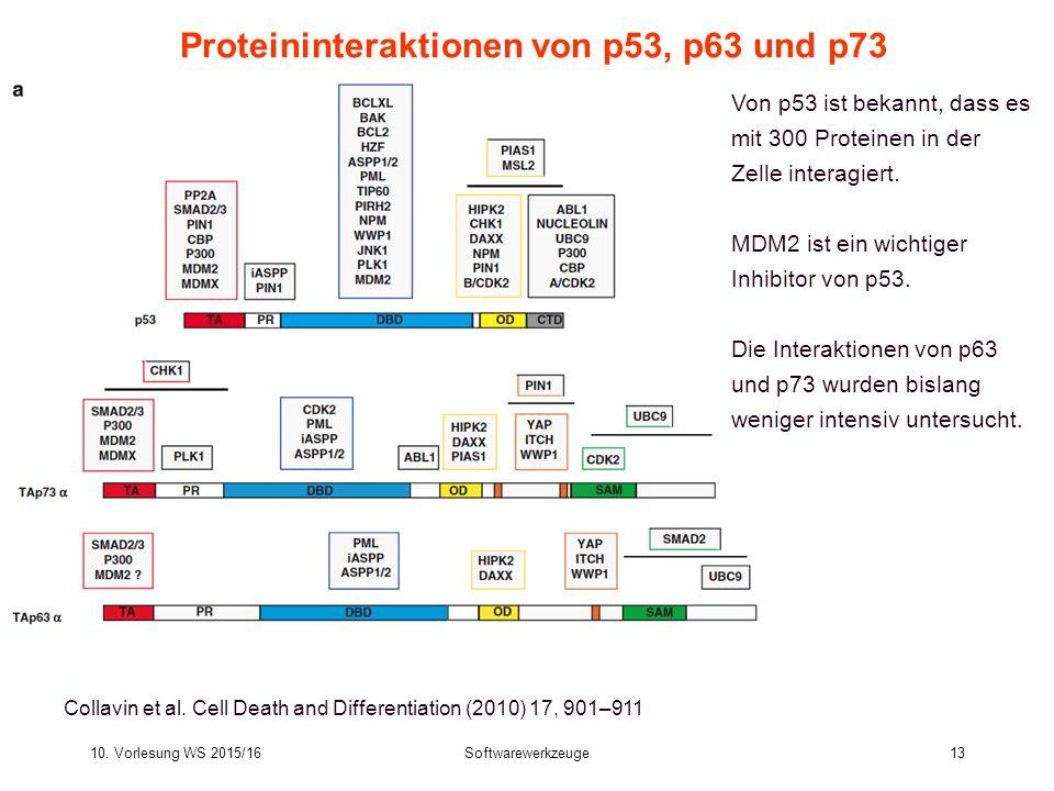 10. Vorlesung WS 2015/16Softwarewerkzeuge13 Proteininteraktionen von p53, p63 und p73 Collavin et al. Cell Death and Differentiation (2010) 17, 901–91
