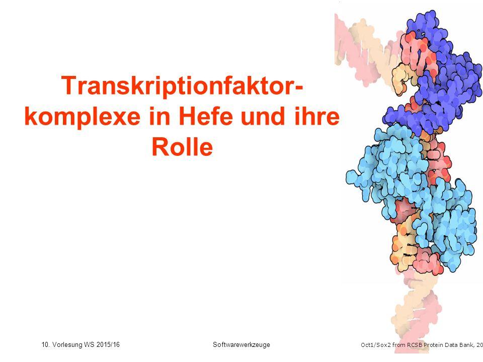 10. Vorlesung WS 2015/16Softwarewerkzeuge16 Transkriptionfaktor- komplexe in Hefe und ihre Rolle Oct1/Sox2 from RCSB Protein Data Bank, 2013